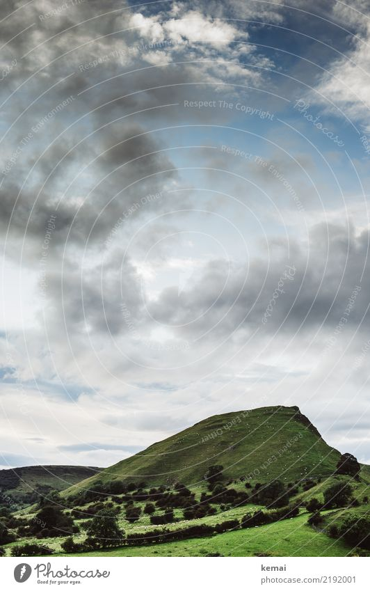 Schafe zählen Himmel Natur Ferien & Urlaub & Reisen Sommer schön grün Landschaft Baum Erholung Wolken ruhig Ferne Wiese Freiheit Ausflug Zufriedenheit
