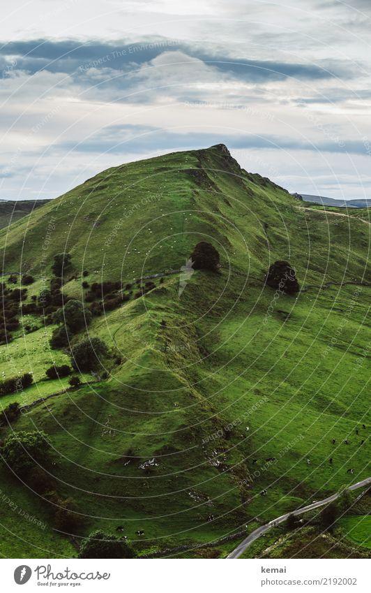Chrome Hill harmonisch Wohlgefühl Zufriedenheit Erholung ruhig Freizeit & Hobby Ausflug Abenteuer Ferne Freiheit Sommer wandern Natur Landschaft Himmel Wolken
