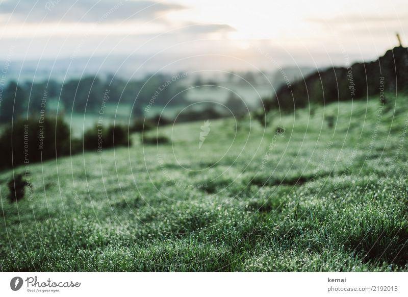 Tau Leben harmonisch Wohlgefühl Zufriedenheit Erholung ruhig Freizeit & Hobby Ausflug Abenteuer Ferne Freiheit Umwelt Natur Landschaft Himmel Sommer