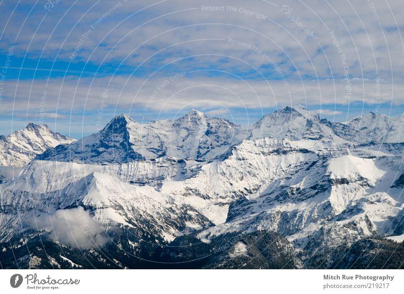Eiger, Mönch, Jungfrau Winter Schnee Berge u. Gebirge Freiheit hoch Schneelandschaft Bergkette Bergkamm massiv Natur Mönch (Berg) Jungfrau (Berg) Wolkenhimmel