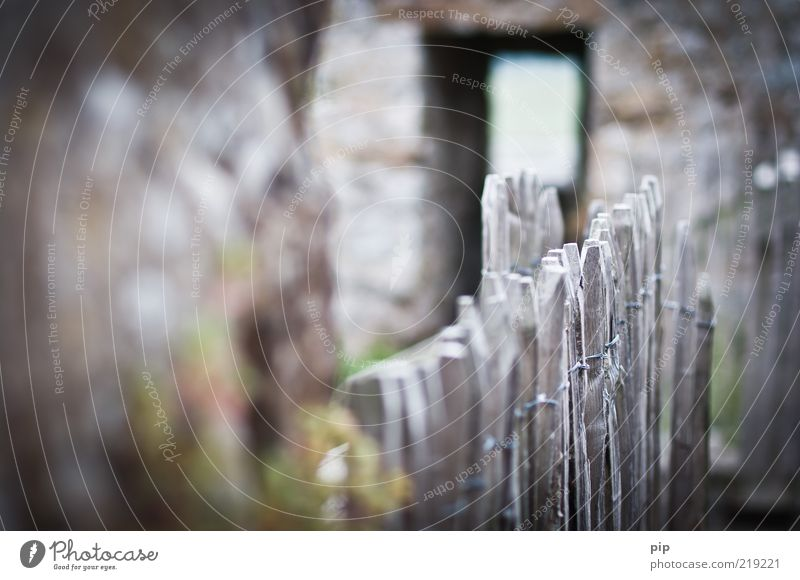 zaunpfahlwink Mauer Wand Zaunpfahl Pferch Holzpfahl einfriedung Stein alt grau Frieden Draht Luke Grenze lattenzaun Holzbrett drüben Begrenzung Unschärfe