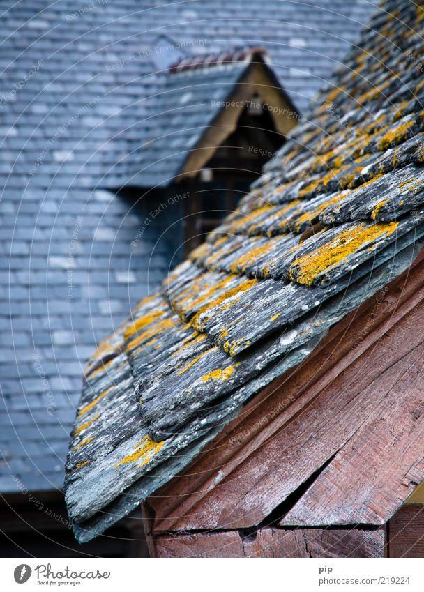noch schiefer alt Haus oben Holz grau rosa hoch Dach Schutz Burg oder Schloss Moos Riss Dachgebälk Flechten Schiefer
