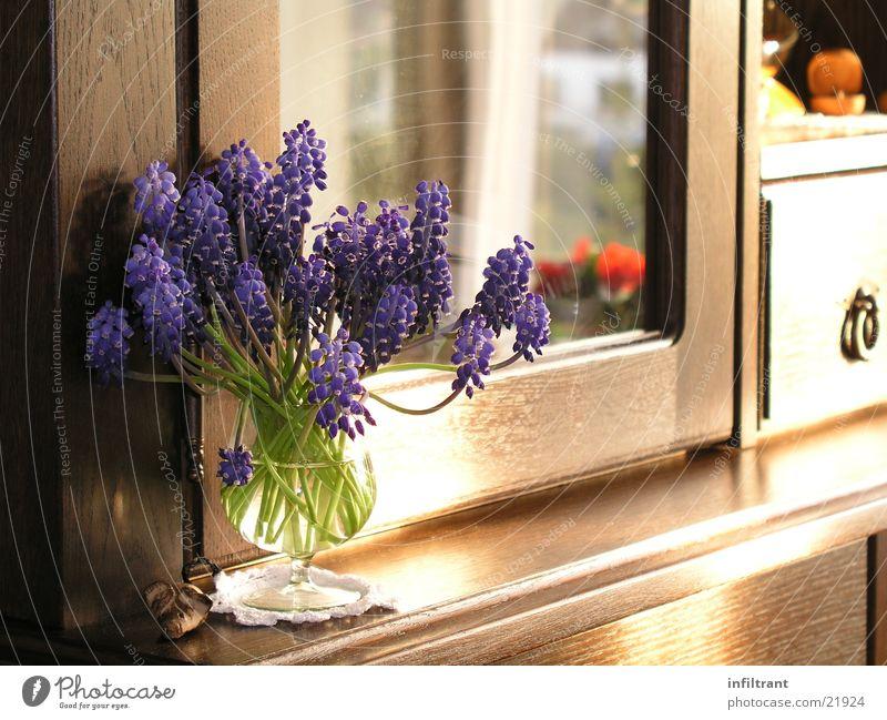 Stillleben Blume Pflanze Blüte Frühling Stimmung Dekoration & Verzierung Möbel Blumenstrauß Stillleben Schrank