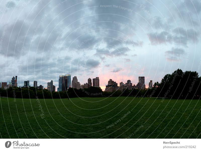 Sheep Meadow at Dusk Baum Stadt grün ruhig Wiese grau Park Hochhaus leer Skyline Abenddämmerung New York City Gebäude friedlich Wolkenhimmel Wolkenformation