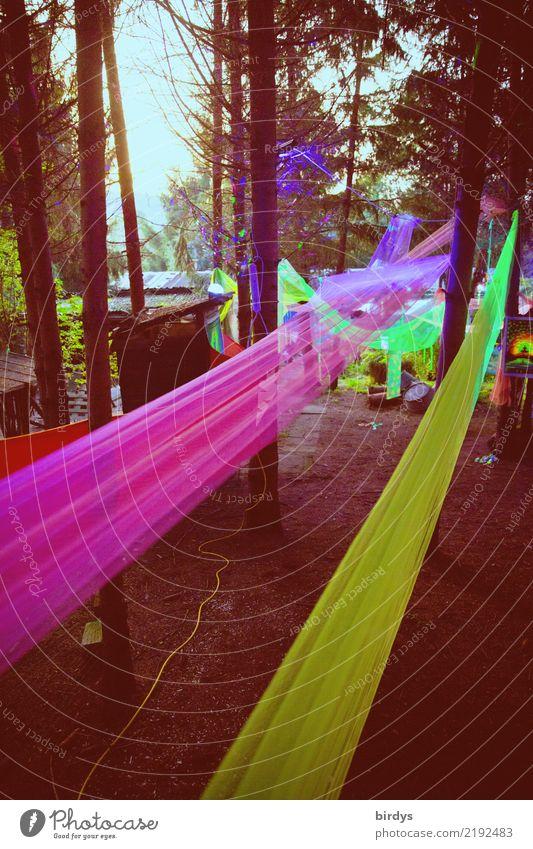 Goa Party Garten Dekoration & Verzierung Veranstaltung Feste & Feiern Baum Wald leuchten fantastisch positiv gelb rosa Freude Farbe Freizeit & Hobby