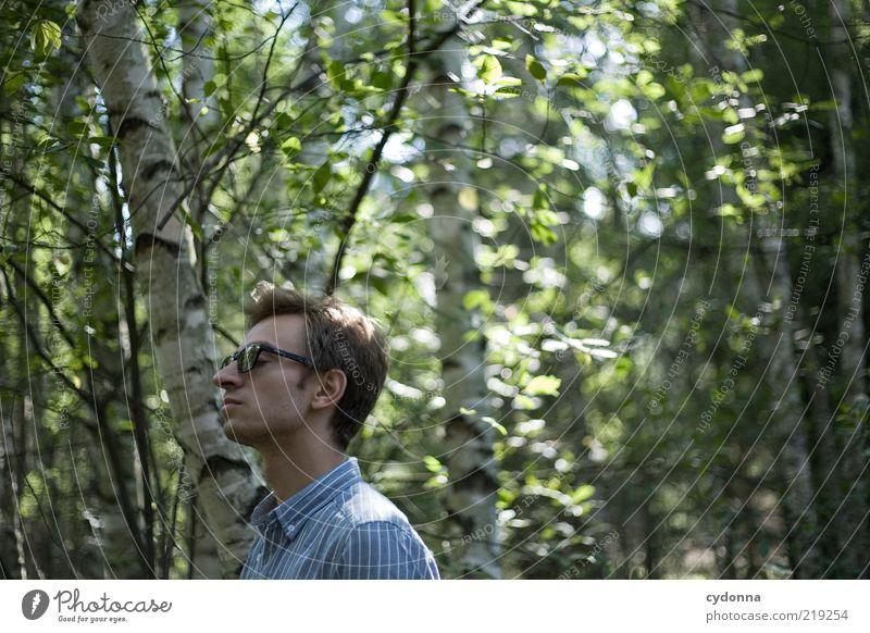 Träumen harmonisch Wohlgefühl Erholung ruhig Freiheit Mensch Junger Mann Jugendliche 18-30 Jahre Erwachsene Umwelt Natur Sommer Baum Wald Leben Leichtigkeit