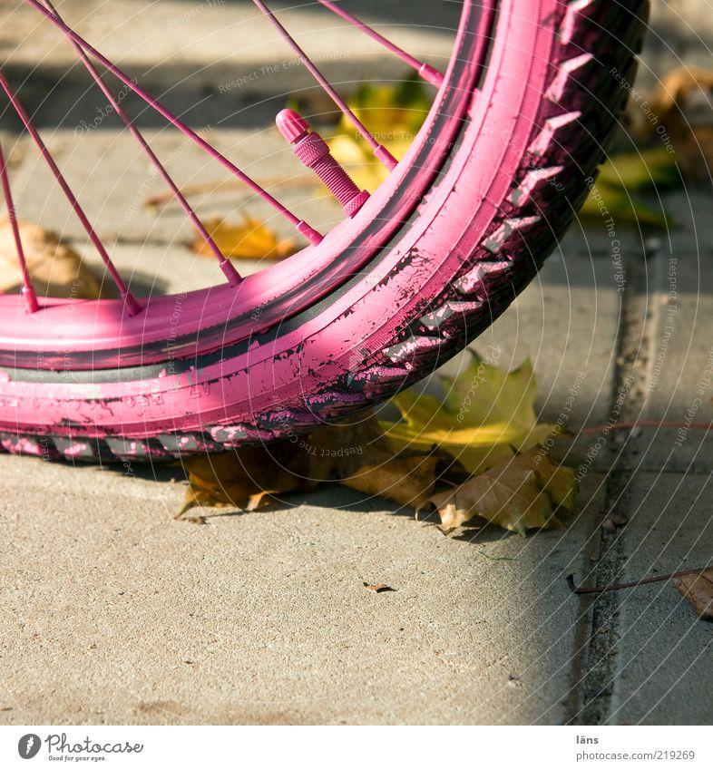 rosa eben Wege & Pfade Beton Mobilität Wandel & Veränderung Fahrradreifen Ventil Reifenprofil Speichen Blatt Herbst Herbstlaub Farbfoto mehrfarbig Außenaufnahme