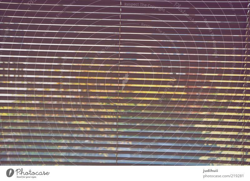 Durchblick Glas Rollladen Fenster Fensterscheibe Häusliches Leben unklar Bildausschnitt Fensterblick verborgen Jalousie Hintergrundbild Streifen gestreift