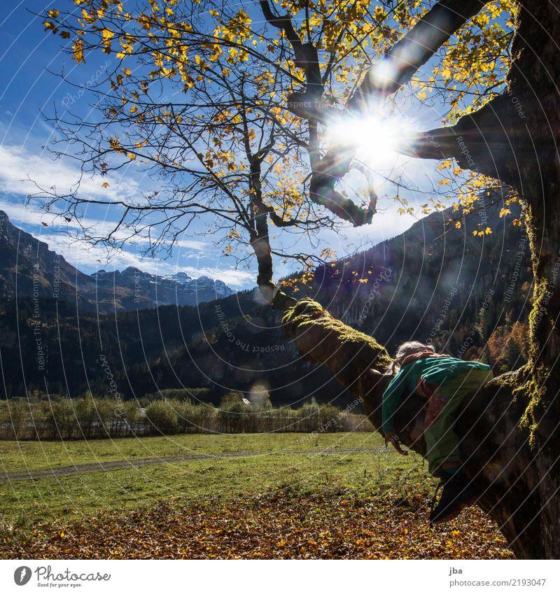 draussen hängen Mensch Natur Sommer Baum Landschaft Erholung Blatt Ferne Mädchen Berge u. Gebirge Herbst Wiese Freiheit Ausflug Freizeit & Hobby Zufriedenheit