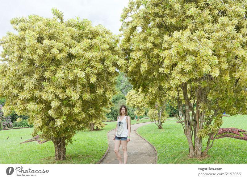Frau Ferien & Urlaub & Reisen schön klein Tourismus Freiheit Park Idylle Sträucher niedlich Freundlichkeit Postkarte Beautyfotografie Asien dünn reisend