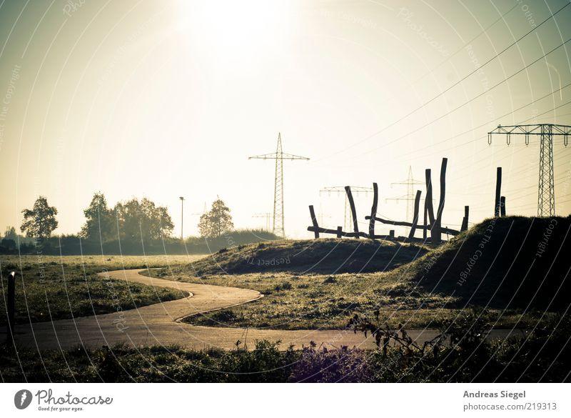 8 Uhr 36 Energiewirtschaft Hochspannungsleitung Strommast Umwelt Landschaft Wolkenloser Himmel Sonne Sonnenlicht Herbst Baum Sträucher Grünpflanze Wiese Hügel