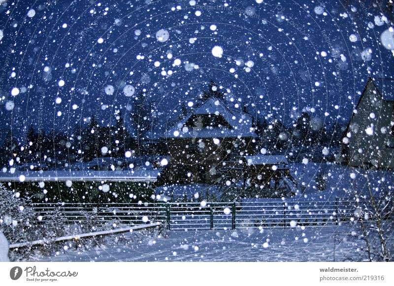 Winterlandschaft Landschaft Schnee Schneefall Dorf Kleinstadt Haus ästhetisch blau schwarz weiß kalt ruhig Schneeflocke Zaun Farbfoto Außenaufnahme abstrakt