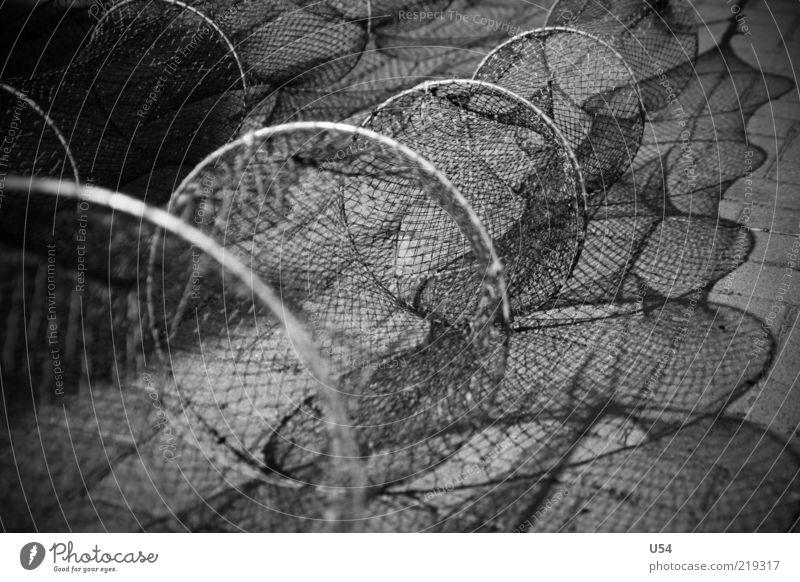 Netzwerk Hafen gefährlich Schwarzweißfoto Außenaufnahme Kontrast Schwache Tiefenschärfe leer lang rund Fischereiwirtschaft Fischernetz Menschenleer