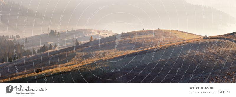 Eis, Frost auf bunter Herbstwiese in den Bergen Natur Ferien & Urlaub & Reisen Baum Landschaft rot Ferne Wald Berge u. Gebirge gelb Umwelt Wege & Pfade Wiese