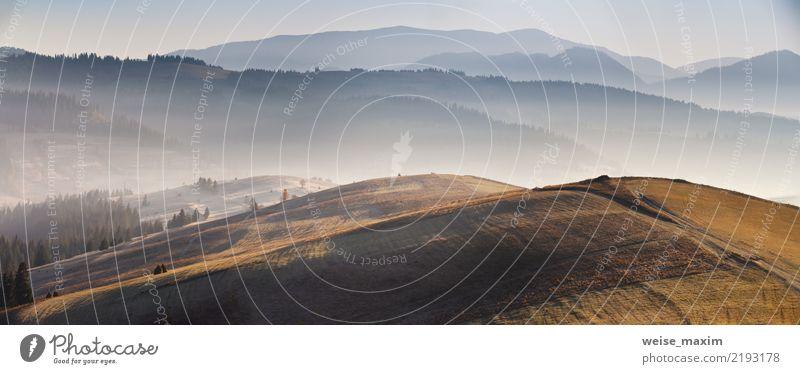 Panorama des Sonnenaufgangs im Gebirgstal. Wunderbares Licht auf Hügeln Himmel Natur Ferien & Urlaub & Reisen Pflanze Baum Landschaft rot Wald Berge u. Gebirge