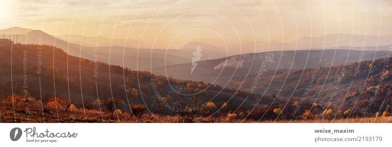 Sonnenuntergangpanorama im Gebirgstal. Goldlicht auf Hügeln Himmel Natur Ferien & Urlaub & Reisen Pflanze Sommer schön Baum Landschaft rot Wolken Wald