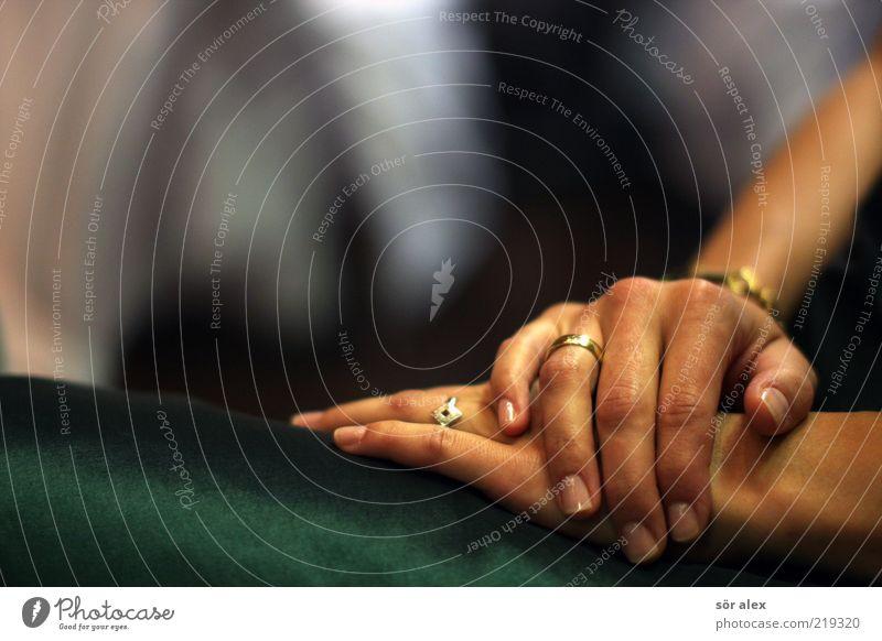 verliebt - verlobt - verheiratet Mensch Frau Jugendliche schön Hand ruhig 18-30 Jahre Erwachsene Liebe feminin Metall Zusammensein warten paarweise Gold Finger