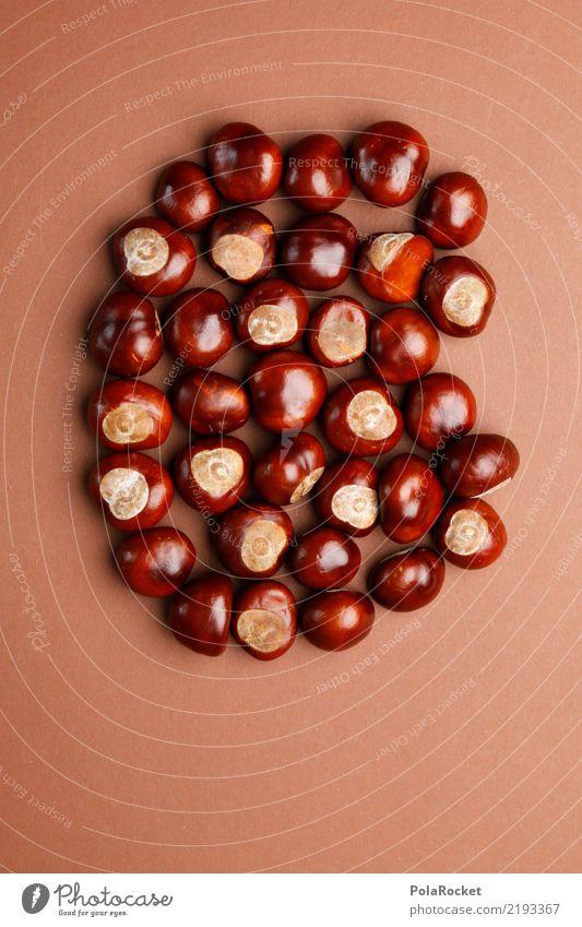 #AS# Kastanienbande Natur ästhetisch Kastanienbaum braun viele Herbst herbstlich Herbstfärbung Herbstbeginn Farbfoto mehrfarbig Innenaufnahme Studioaufnahme
