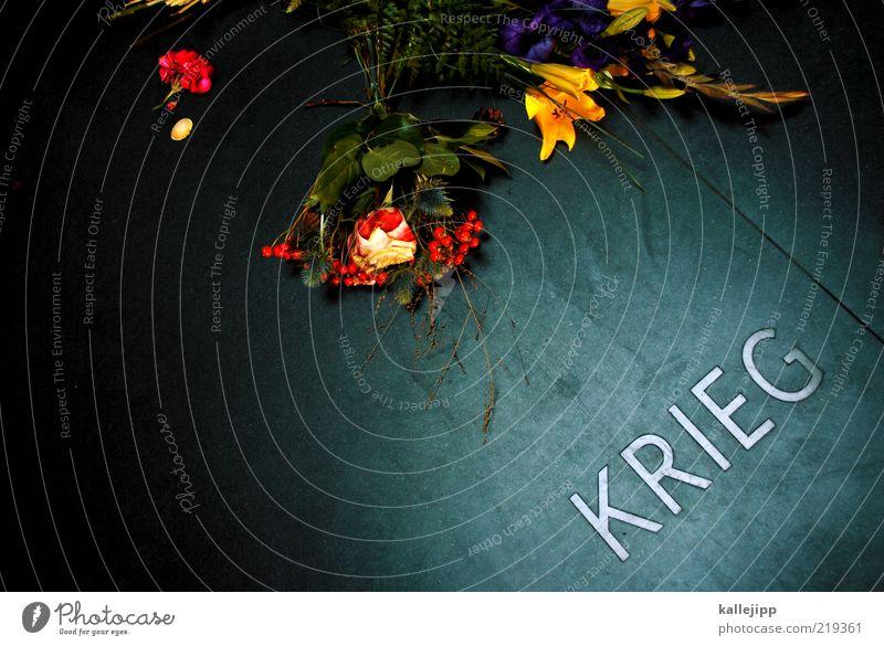 what is it good for? Blume Einsamkeit dunkel Tod Traurigkeit glänzend Trauer Schriftzeichen Frieden Sehnsucht Zeichen Schmerz Denkmal Blumenstrauß historisch