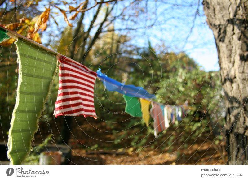 Sommer schön Gefühle Garten Stimmung Umwelt ästhetisch Wäsche waschen mehrfarbig trocknen Wäscheleine Waschtag