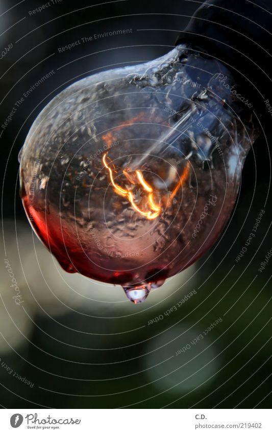 Herbstlicht Wasser Lampe Glas nass Wassertropfen Elektrizität retro rund leuchten feucht Glühbirne glühen elektrisch veraltet glühend
