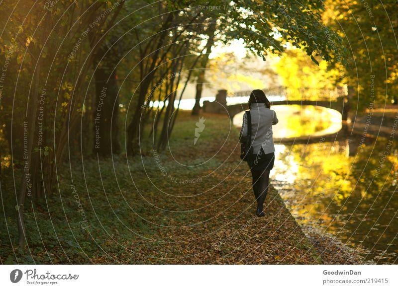 Träume IV Mensch feminin Junge Frau Jugendliche Umwelt Natur Wasser Schönes Wetter Park Bach atmen Gefühle Stimmung frei gehen distanzieren Ferne traumhaft