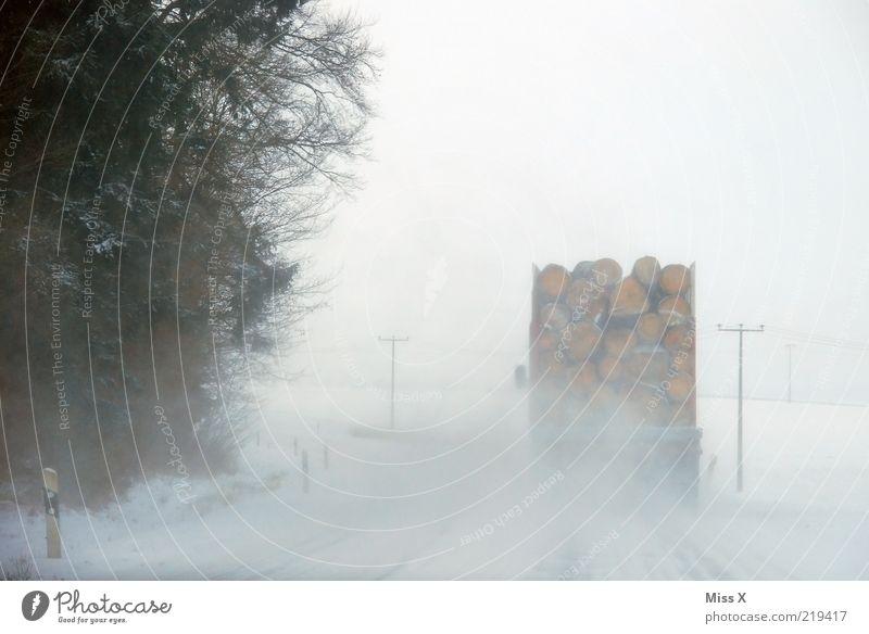 Winterfreuden Eis Frost Schnee Schneefall Verkehr Verkehrsmittel Verkehrswege Straßenverkehr Fahrzeug Lastwagen fahren weiß gefährlich Verkehrssicherheit Holz