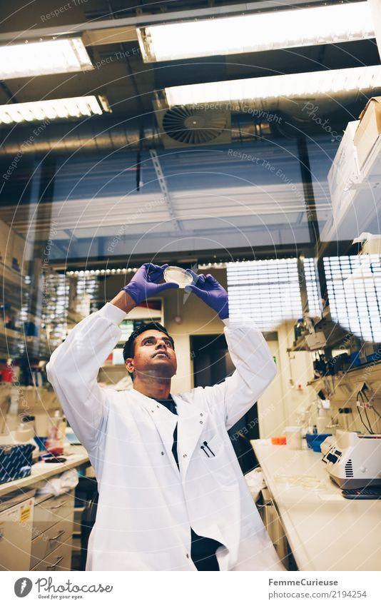 Science is beautiful (13) Mensch Mann Erwachsene maskulin Zukunft Konzentration Wissenschaften Fortschritt Handschuhe Chemie Labor Biologie kompetent