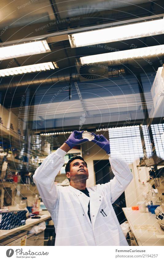 Science is beautiful (40) Mensch Mann Erwachsene maskulin Zukunft Konzentration Wissenschaften Fortschritt Handschuhe Chemie Labor international Biologie