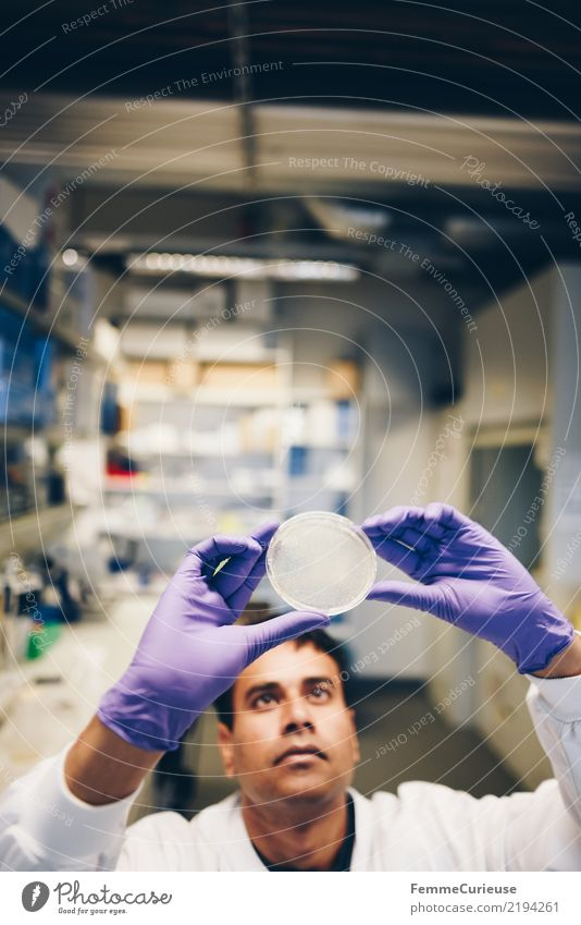 Science is beautiful (04) Mensch Mann Erwachsene maskulin Zukunft violett Konzentration Wissenschaften Fortschritt Handschuhe Chemie Labor international