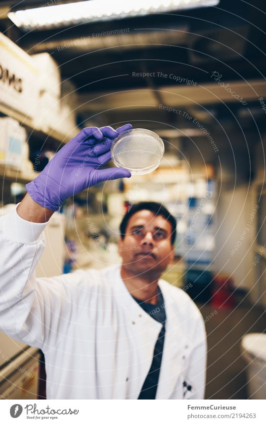 Science is beautiful (45) Wissenschaften Fortschritt Zukunft maskulin Mann Erwachsene 1 Mensch 30-45 Jahre kompetent Konzentration Wissenschaftler Handschuhe