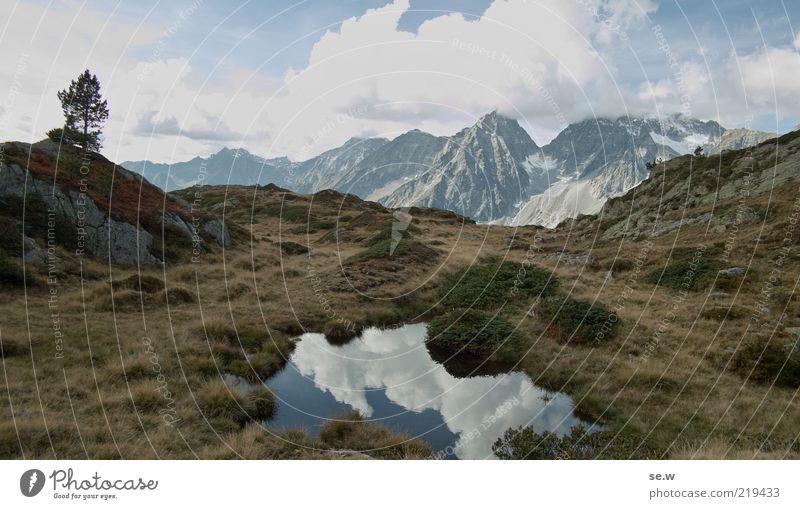 Einsam .................... | Antholz [12] Baum blau ruhig Wolken Gras Berge u. Gebirge Freiheit braun Horizont Felsen Romantik Sträucher Alpen Unendlichkeit