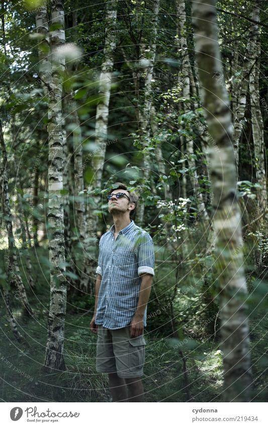 Suche Mensch Natur Jugendliche Sommer ruhig Einsamkeit Erholung Leben Freiheit Umwelt Stil träumen Erwachsene Gesundheit Zufriedenheit Ausflug