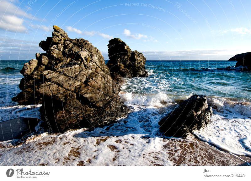 beständig Ferien & Urlaub & Reisen Ausflug Freiheit Strand Meer Natur Sand Wasser Herbst Küste Schottland Stein alt eckig einzigartig Felsen Schaum Gischt