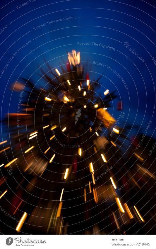 Christmastree Feste & Feiern Festbeleuchtung festlich Weihnachtsbaum Weihnachtsdekoration leuchten fantastisch Gefühle Stimmung Farbfoto Außenaufnahme