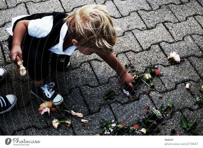 Blumenkind Mensch Kind Junge Feste & Feiern blond Schuhe maskulin Boden Kleinkind Anzug Kopfsteinpflaster Sammlung Pflastersteine greifen schick