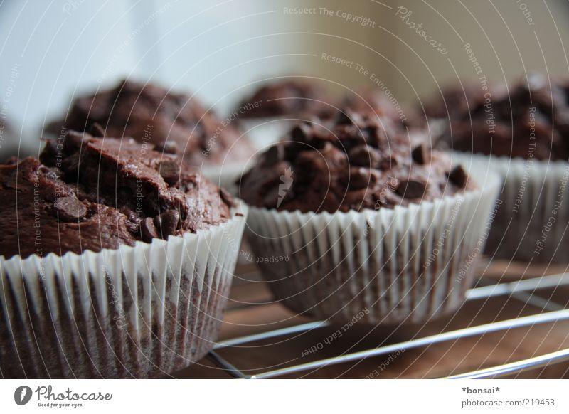 *100* muffins Teigwaren Backwaren Kuchen Dessert Süßwaren Schokolade Ernährung Übergewicht Küche Duft frisch heiß lecker saftig süß Wärme braun weiß Vorfreude