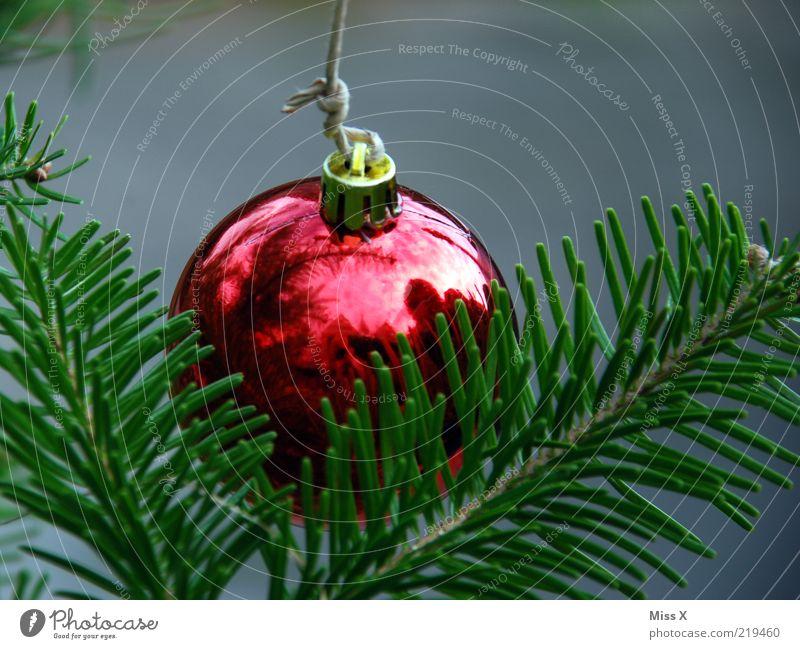 Glaskugel Weihnachten & Advent rot glänzend Christbaumkugel hängen Weihnachtsdekoration Tannenzweig Kugel Tannennadel Baumschmuck Glaskugel