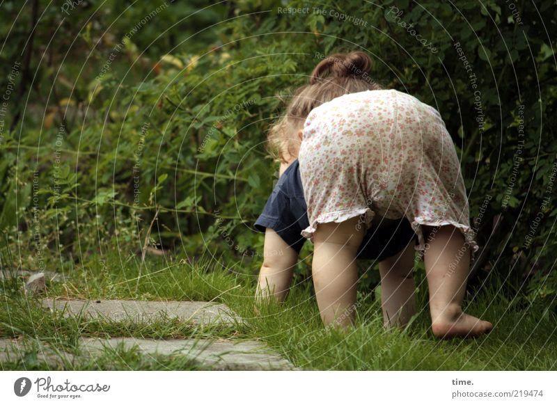 Der aufrechte Gang erfordert gewissenhafte Vorbereitungen Garten Kind Mensch Kleinkind Mädchen Arme Beine Hose krabbeln grün Gefühle Vorfreude selbstbewußt