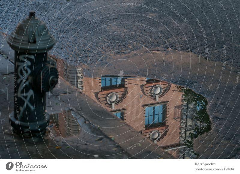 Lache - mal wieder Menschenleer Haus Fassade Wasser braun schwarz Pfütze Wasserlache Hydrant Straße Bordsteinkante Farbfoto Außenaufnahme Textfreiraum rechts