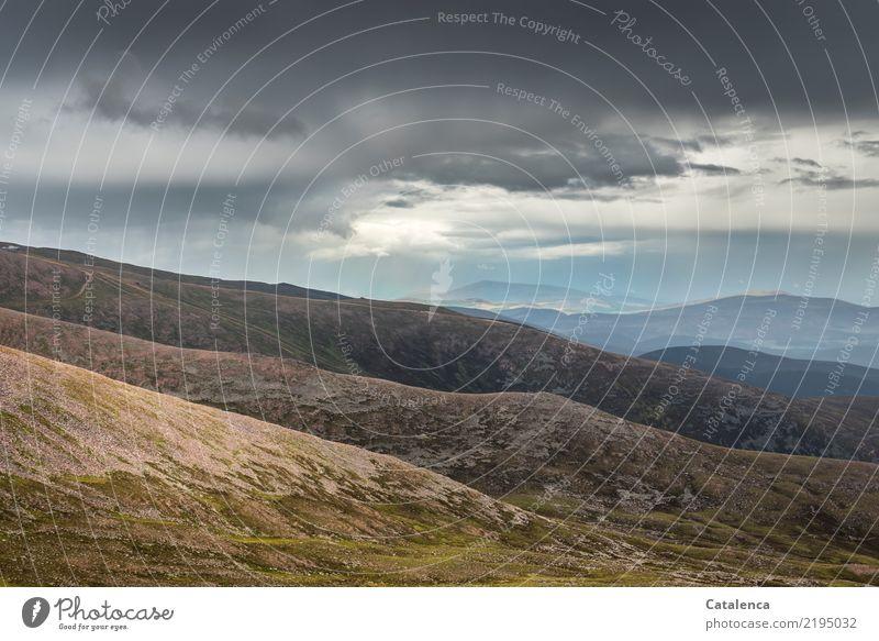 Hügel Natur Landschaft Himmel Gewitterwolken Horizont Sommer schlechtes Wetter Gras Gipfel Felsen Stein Sand beobachten wandern ästhetisch natürlich blau braun