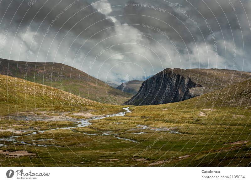 Hochmoorlandschaft Berge u. Gebirge wandern Landschaft Urelemente Himmel Gewitterwolken Horizont Sommer schlechtes Wetter Regen Gras Moos Wildpflanze Hügel