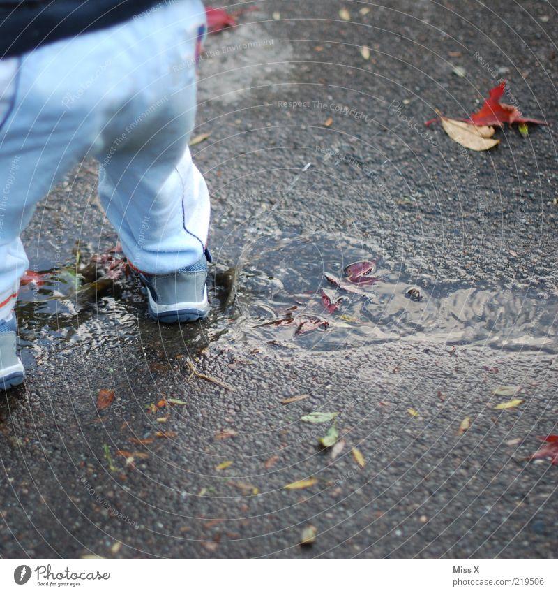 Herbstspaß Mensch Kind Wasser Freude kalt Spielen Wege & Pfade dreckig nass Wassertropfen Kindheit Kleinkind spritzen Pfütze hüpfen