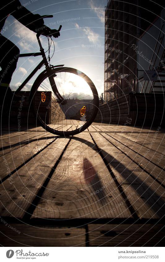 oh sunny sunny day Fahrradfahren 1 Mensch Fahrradweg Steg Zentralperspektive unterwegs Farbfoto Außenaufnahme Tag Silhouette Sonnenlicht Sonnenstrahlen
