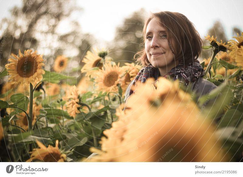 Sunflower1 Mensch feminin Junge Frau Jugendliche Erwachsene Kopf 18-30 Jahre 30-45 Jahre Natur Pflanze Herbst Schönes Wetter Blatt Blüte Grünpflanze Sonnenblume