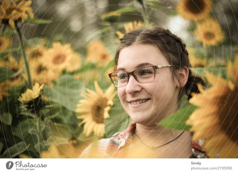 Sunflower3 Mensch feminin Mädchen Junge Frau Jugendliche Kopf 1 13-18 Jahre Pflanze Blume Blatt Blüte Sonnenblume Sonnenblumenfeld Feld Brille brünett Zopf