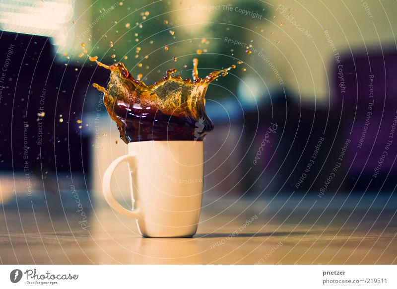 Cookie Splash Gefühle Stil Stimmung lustig Lebensmittel Design verrückt Getränk Kaffee Tropfen Spitze außergewöhnlich Flüssigkeit lecker Dynamik Tasse