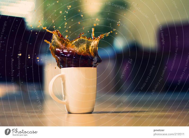 Cookie Splash Lebensmittel Getränk Heißgetränk Kaffee Tasse Becher Stil Design Wohnzimmer außergewöhnlich lecker lustig positiv verrückt Gefühle Stimmung