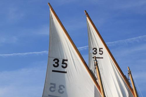 mitgehangen, mitgefangen Freizeit & Hobby Ausflug Freiheit Sport Wassersport Segeln Umwelt Luft Himmel Sommer Wind Bootsfahrt Reinheit Tradition 35 Segeltuch