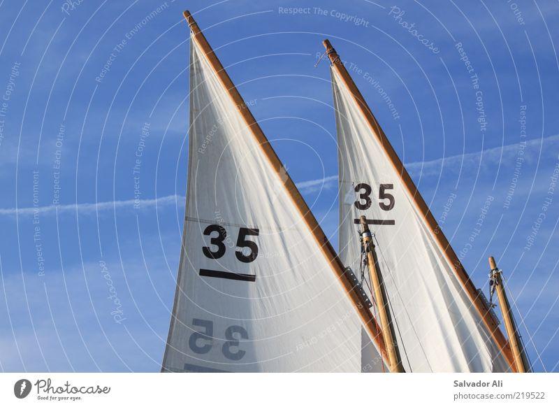 mitgehangen, mitgefangen Himmel Sommer Umwelt Sport Freiheit Luft Wind Freizeit & Hobby Beginn Ausflug paarweise Sportmannschaft Team Segeln parallel Tradition
